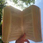 Review: Shantaram – Gregory David Roberts