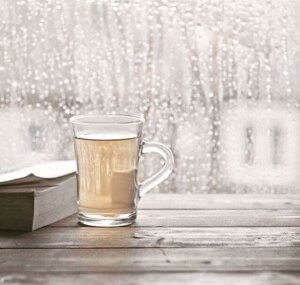 Rainy reads