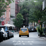 A New York Reading Guide
