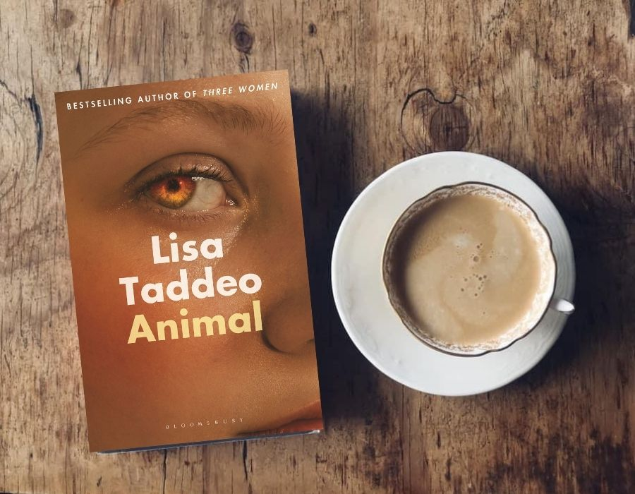 Animal by Lisa Taddeo